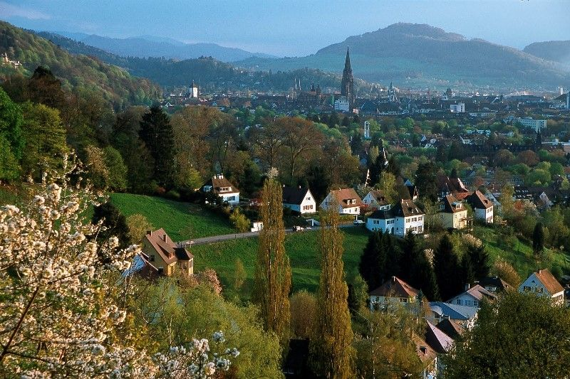 Freiburg BlickvonHerdern - RoadTrip Motorcycle Tours, Black Forrest Tour