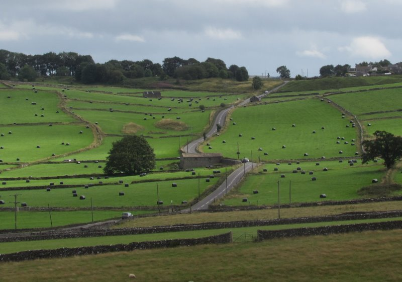 Yorks-Peak road through rolling fields