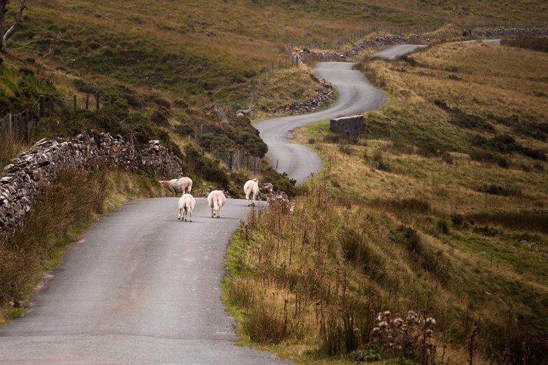Typical welsh road